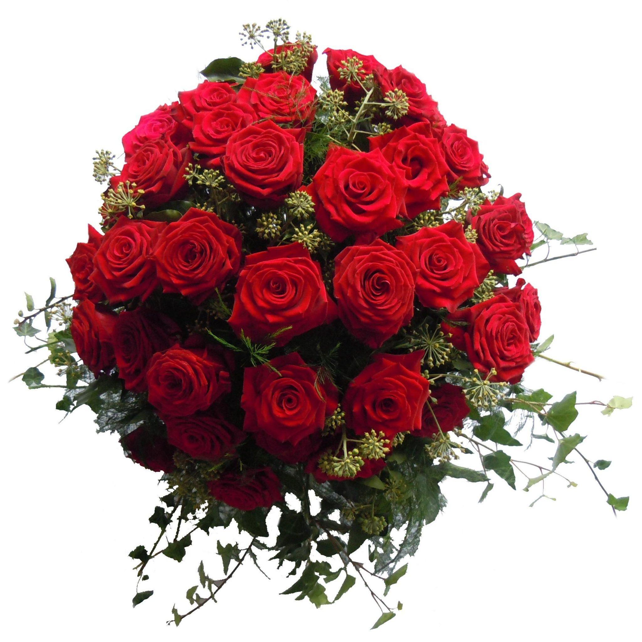 Dišeče vrtnice