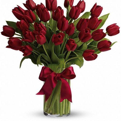 Rumeni tulipani