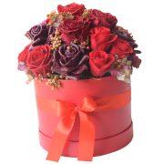 Rdeče preparirane vrtnice